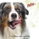 Prinsfood Hond banner